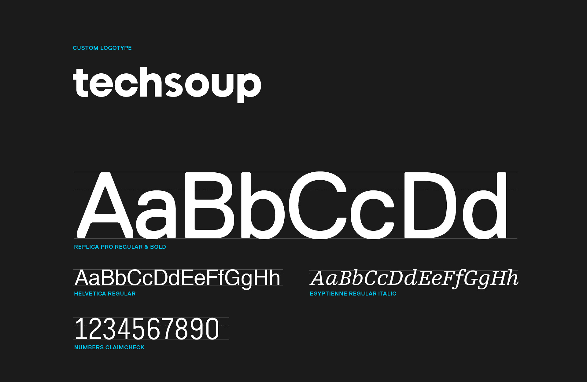 techsoup_type